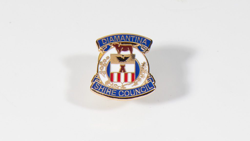 Council pin, soft enamel, epoxy
