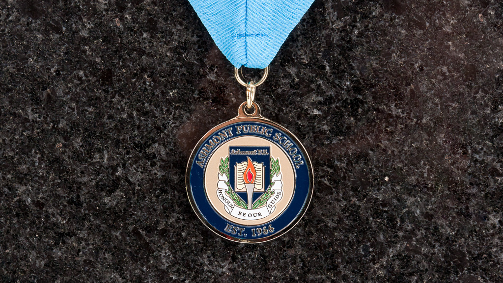 Custom medallion for a Ashmont Public School