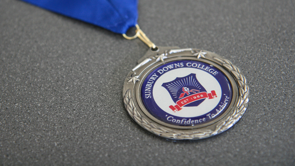 Custom printed domed logo medal.
